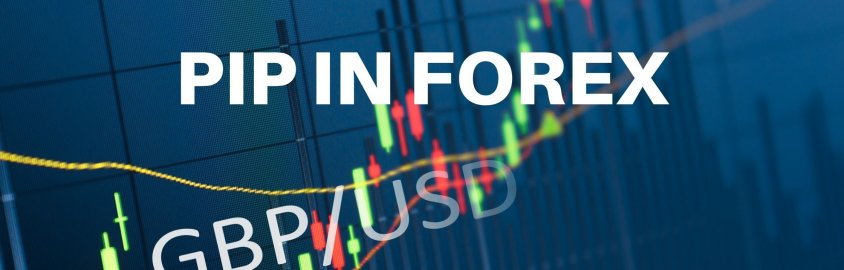 PIP IN FOREX olymp trade